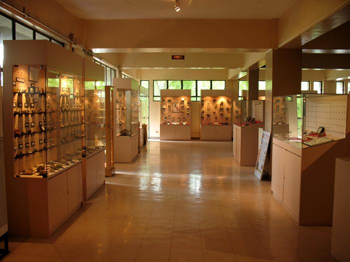 UP NIGS-UPGAA Geology Museum